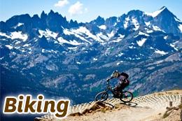 mammoth-biking